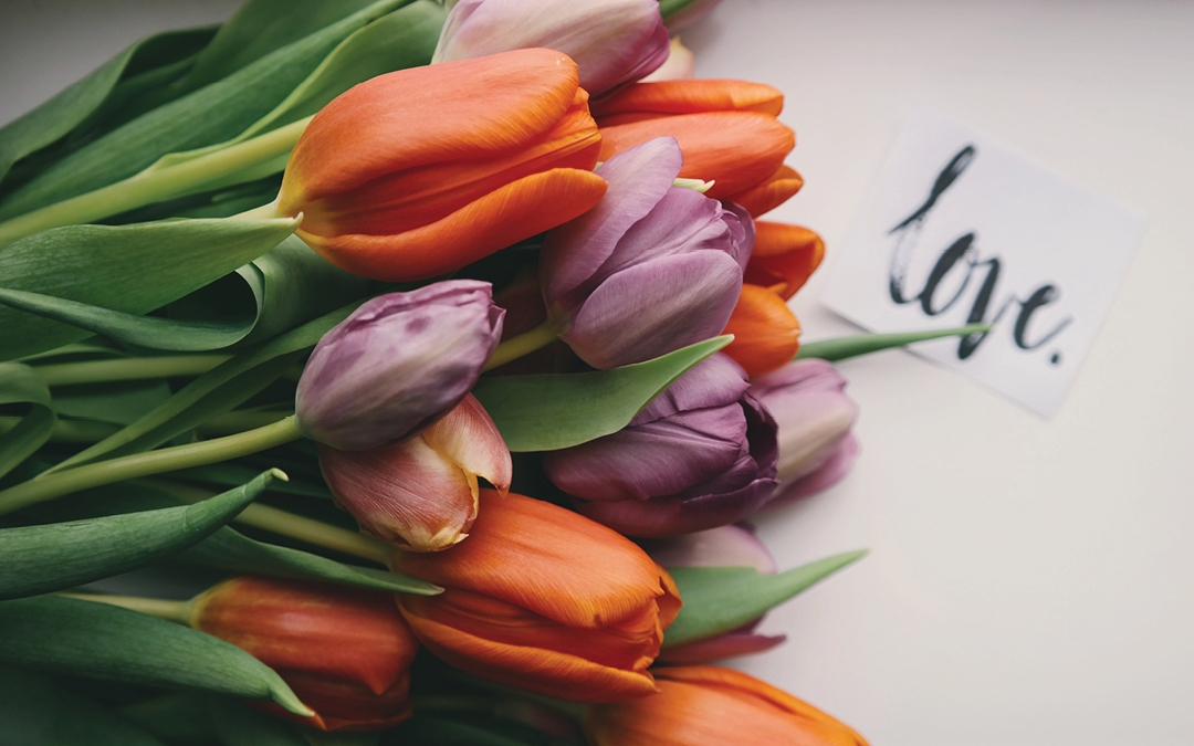 a bouquet of tulips, the word love written in blue ink, how to forgive a cheater